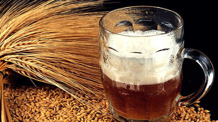 Les bases de la bière maison